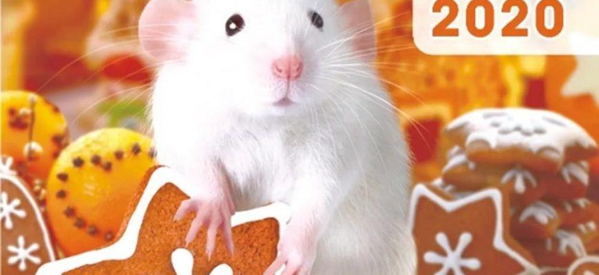 2020 Металлическая Крыса