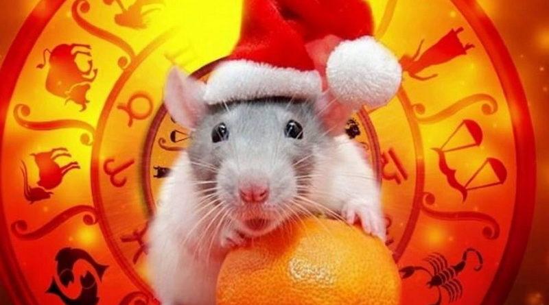 Символ года - крыса